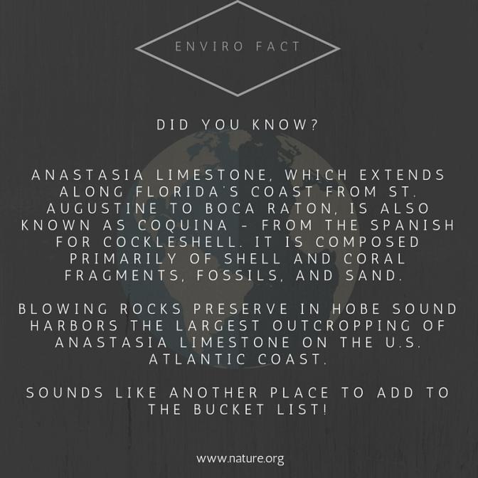 Enviro Fact (6)