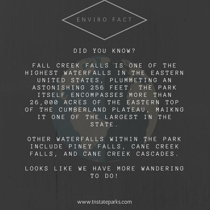enviro fact (7)