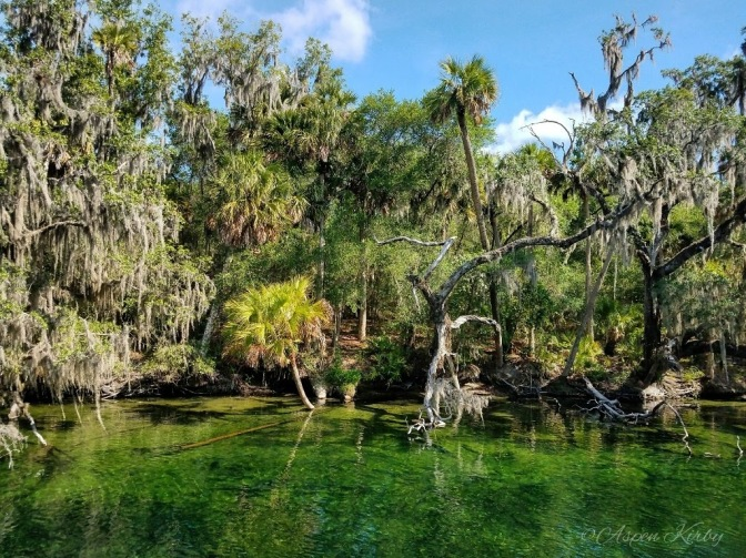 Blue Spring State Park in Orange City, Florida, near Orlando