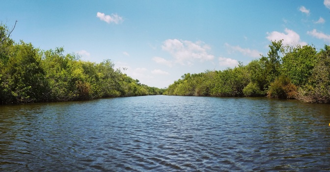 Kayaking Turkey Creek in Palm Bay, Florida