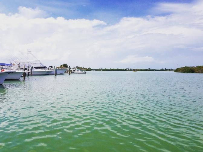Sparky's Landing, Key Colony